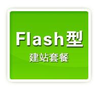 全站Flash型